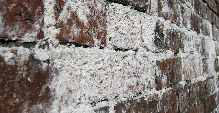 Severe efflorescence on brick wall - Source: askwetandforget.com